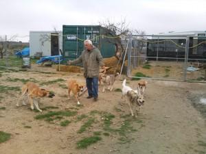 Juan als vader tussen de hondjes
