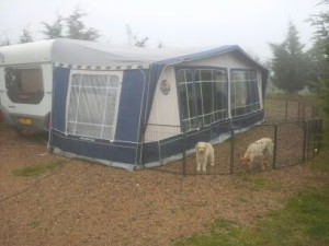 tent doghotel